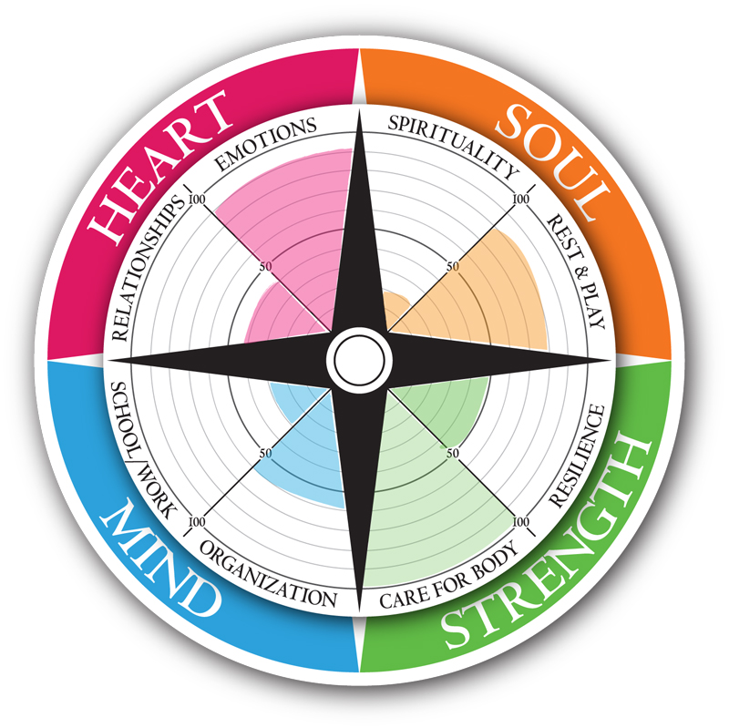 Self Assessment Compass