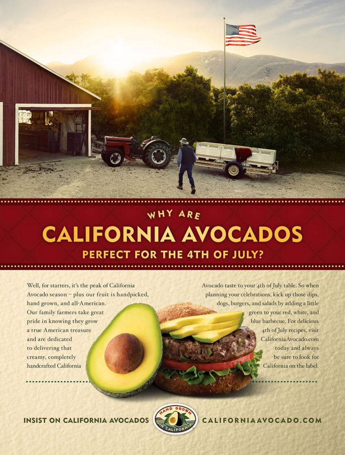 Matt California Avocados.jpg
