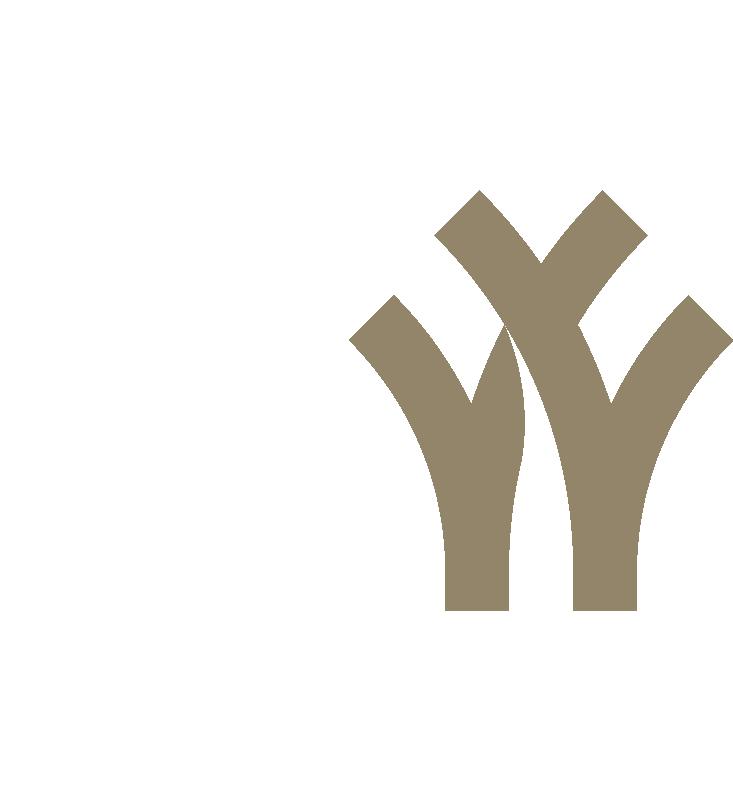 Y&Y-Logo-02.png