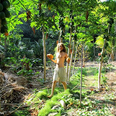 Eden-Hope-Vanuatu-Picking-Paw-Paws.jpg