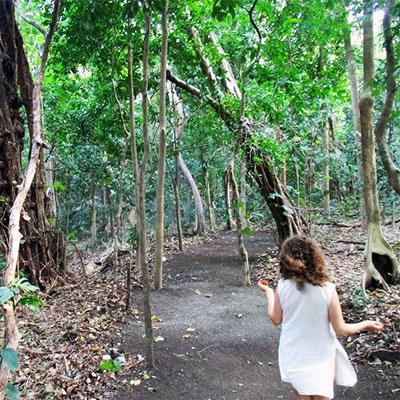Eden-Hope-Vanuatu-Skipping-through-the-rainforest.jpg