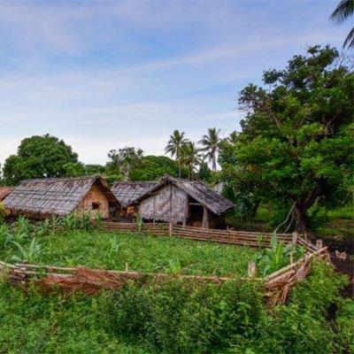 Eden-Hope-Vanuatu-Environmental-Projects.jpg
