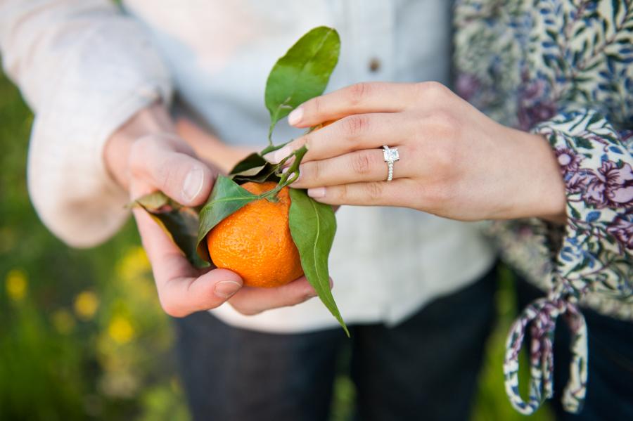 Kara Gwyn Photography Sonoma-Wine-Country-Engagement-Photography-1.jpg