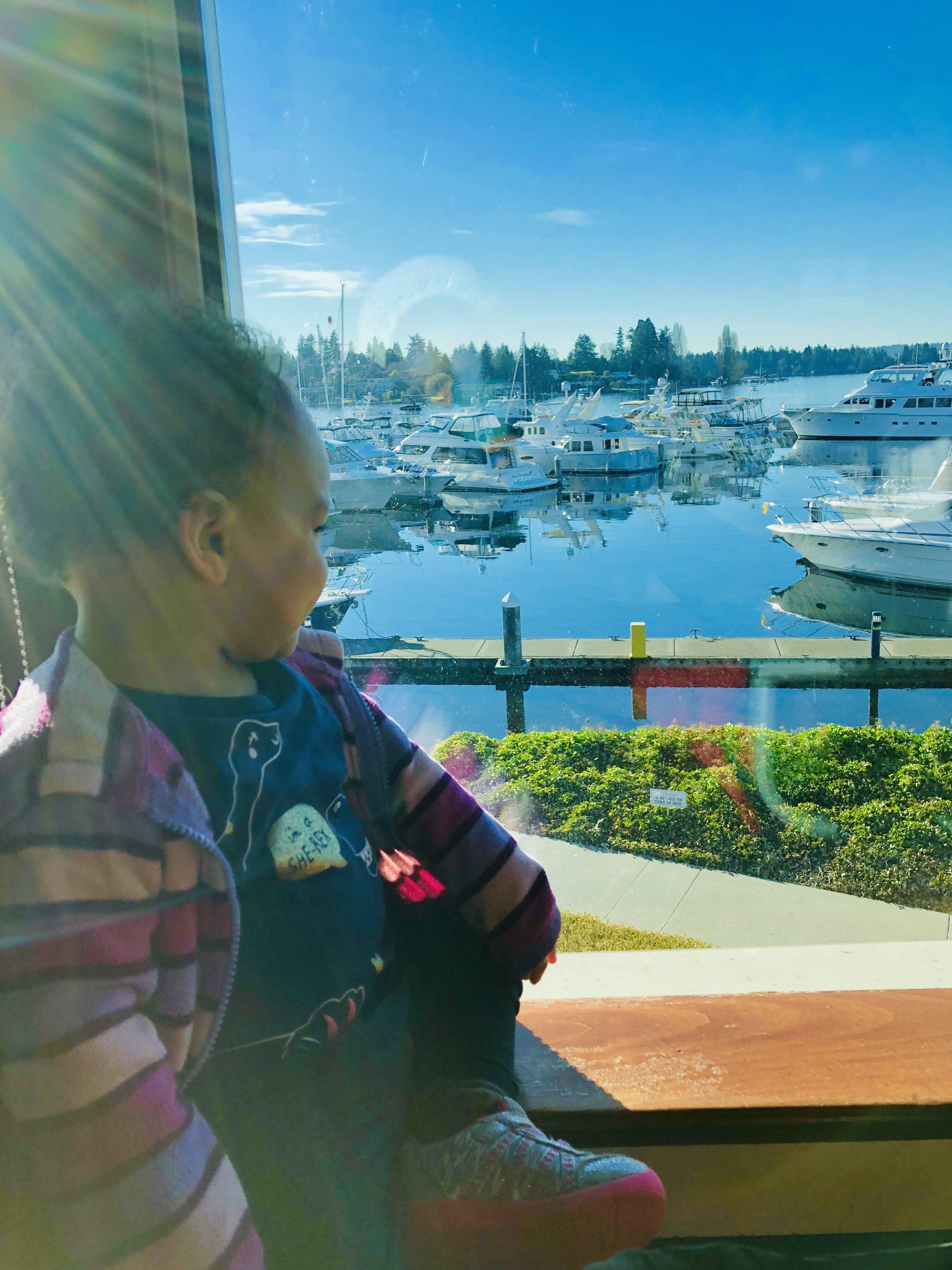 Miah taking in the Kirkland, Washington views like a boss.