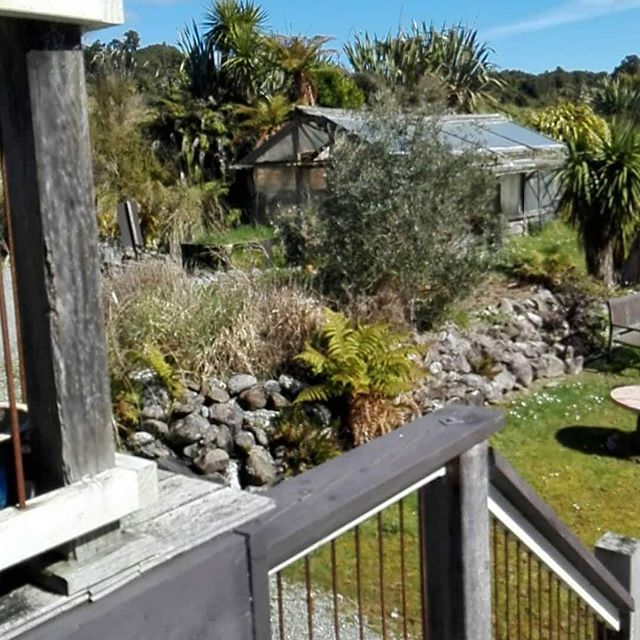 New backyard @hurunuijacks is beautiful! #hokitika #westcoastnz #coffeeroaster