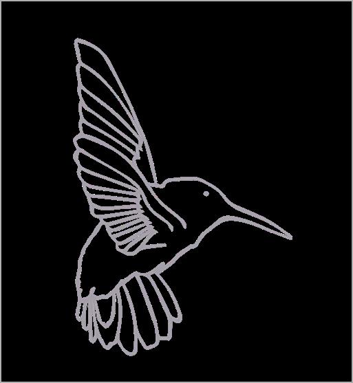 bird resized.png