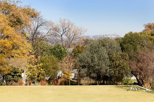 House with a garden and nice pool is the number one priority our clients ask for when looking for a home in Joburg. ⠀⠀⠀⠀⠀⠀⠀⠀⠀ ⠀⠀⠀⠀⠀⠀⠀⠀⠀ Have you come across any beautiful homes that could be suitable for a corporate let? Please get in touch, we are always on the look out to support those #newintown. ⠀⠀⠀⠀⠀⠀⠀⠀⠀ ⠀⠀⠀⠀⠀⠀⠀⠀⠀ #movingtosouthafrica #joburgexpat #capetownexpat #dreamgarden #internationalliving #expatlife #expatinsouthafrica #housewithaview