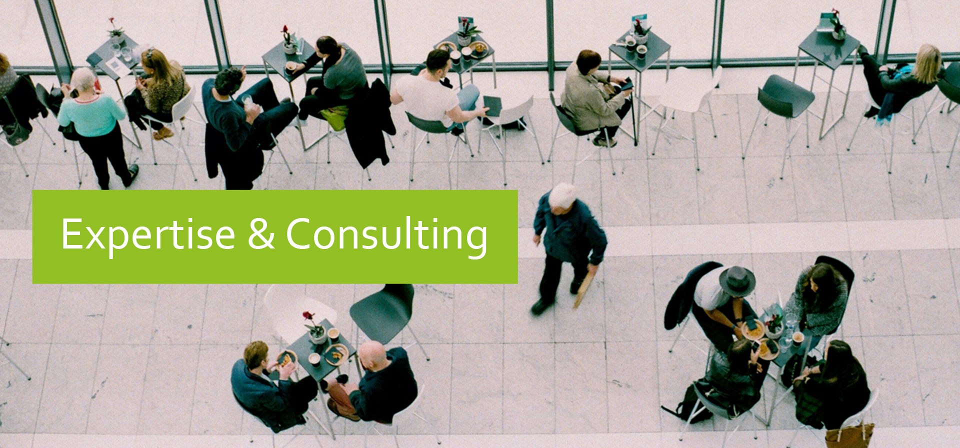 Expertise and Consulting
