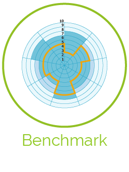 Benchmark Reports, Predefined Profiles