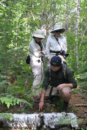 The professionals and volunteers on our team work to educate and inform our board, members, neighbors, and visitors about the resources of the land in the Kezar Lake region. Our programs include tours, walks, nature studies, lectures, and special events for all levels of ability and interest.