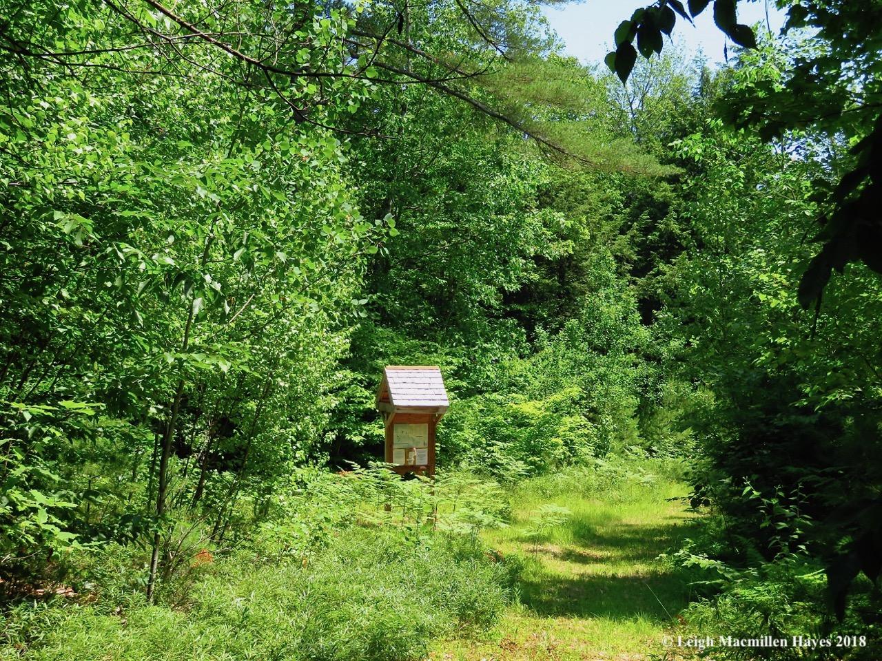 j2-trail-and-kiosk.jpg
