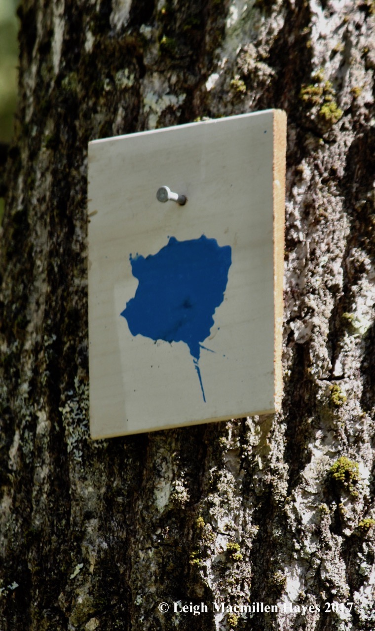l-sloppy-trail-marker.jpg