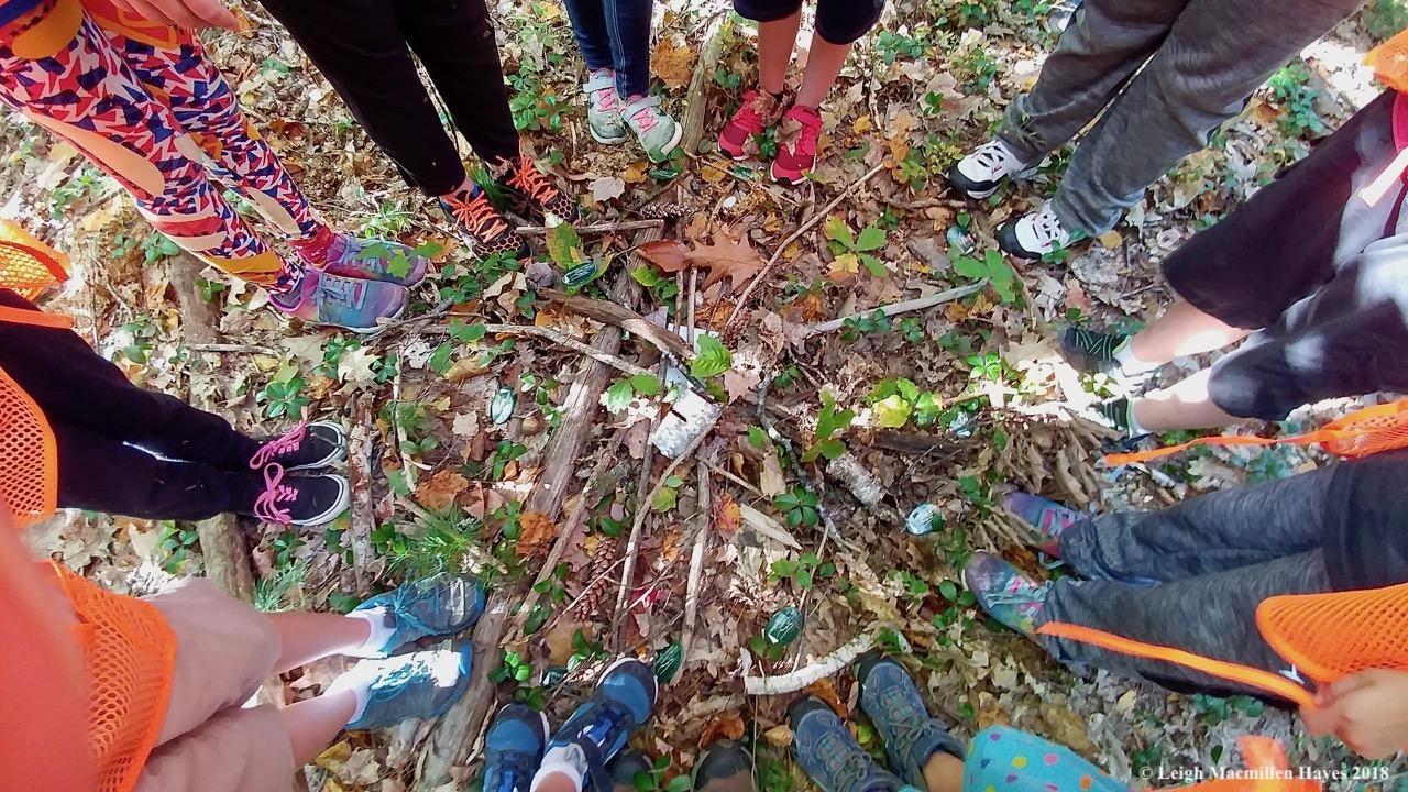 GLLT/Lovell Recreation Trailblazers created a woodland map