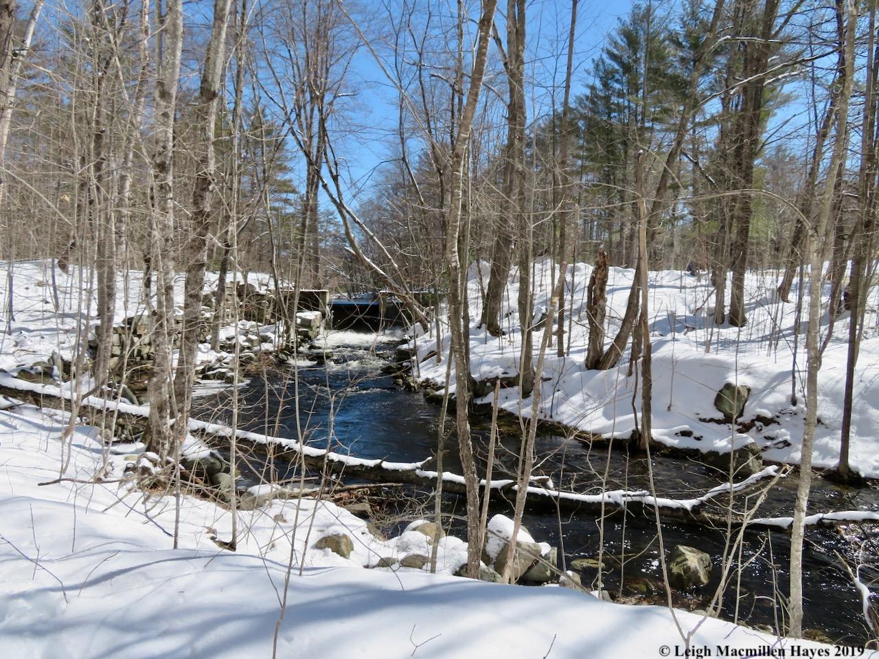2-mill-brook-below-heald-pond.jpg