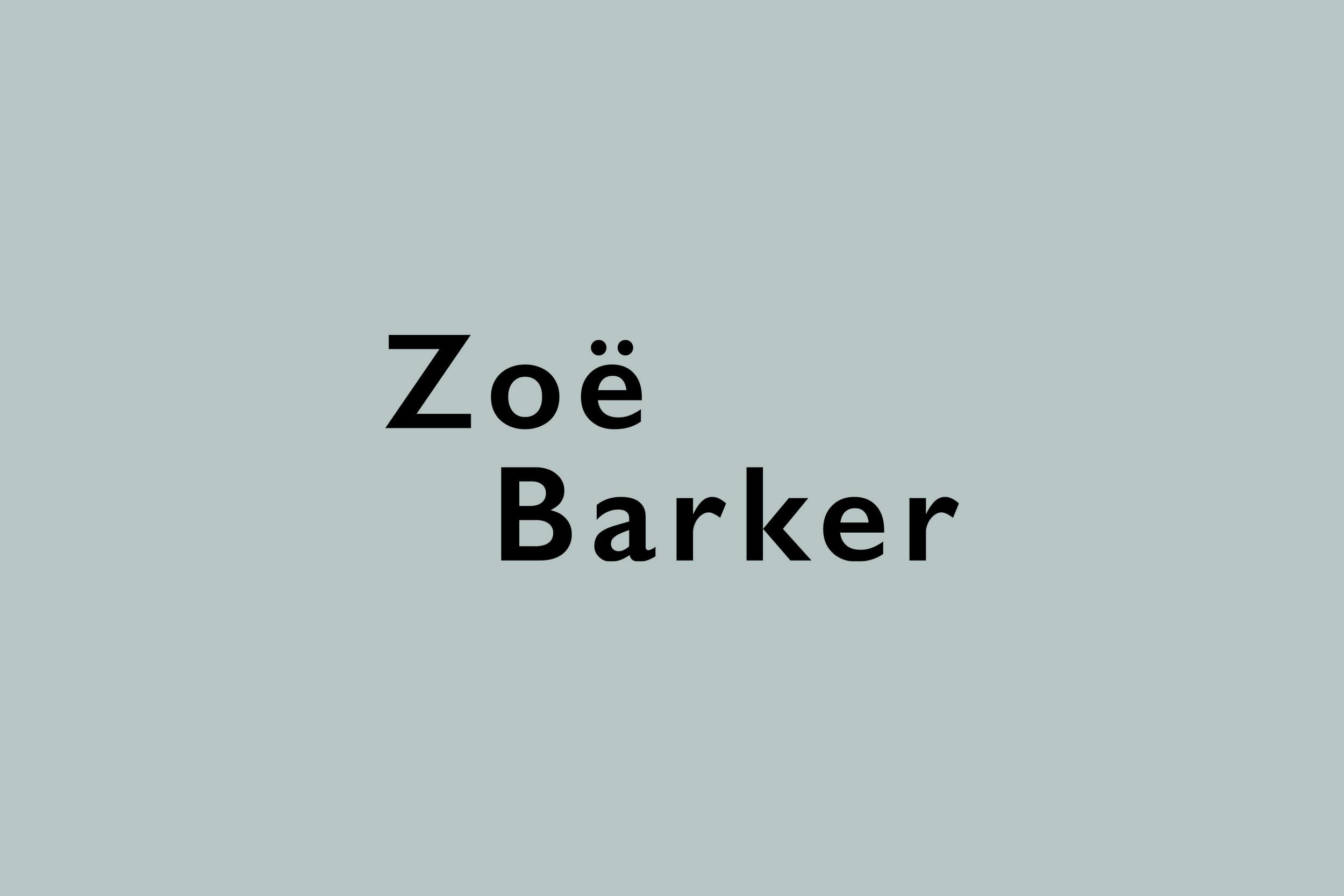 ZBD Logo Website Images.jpg