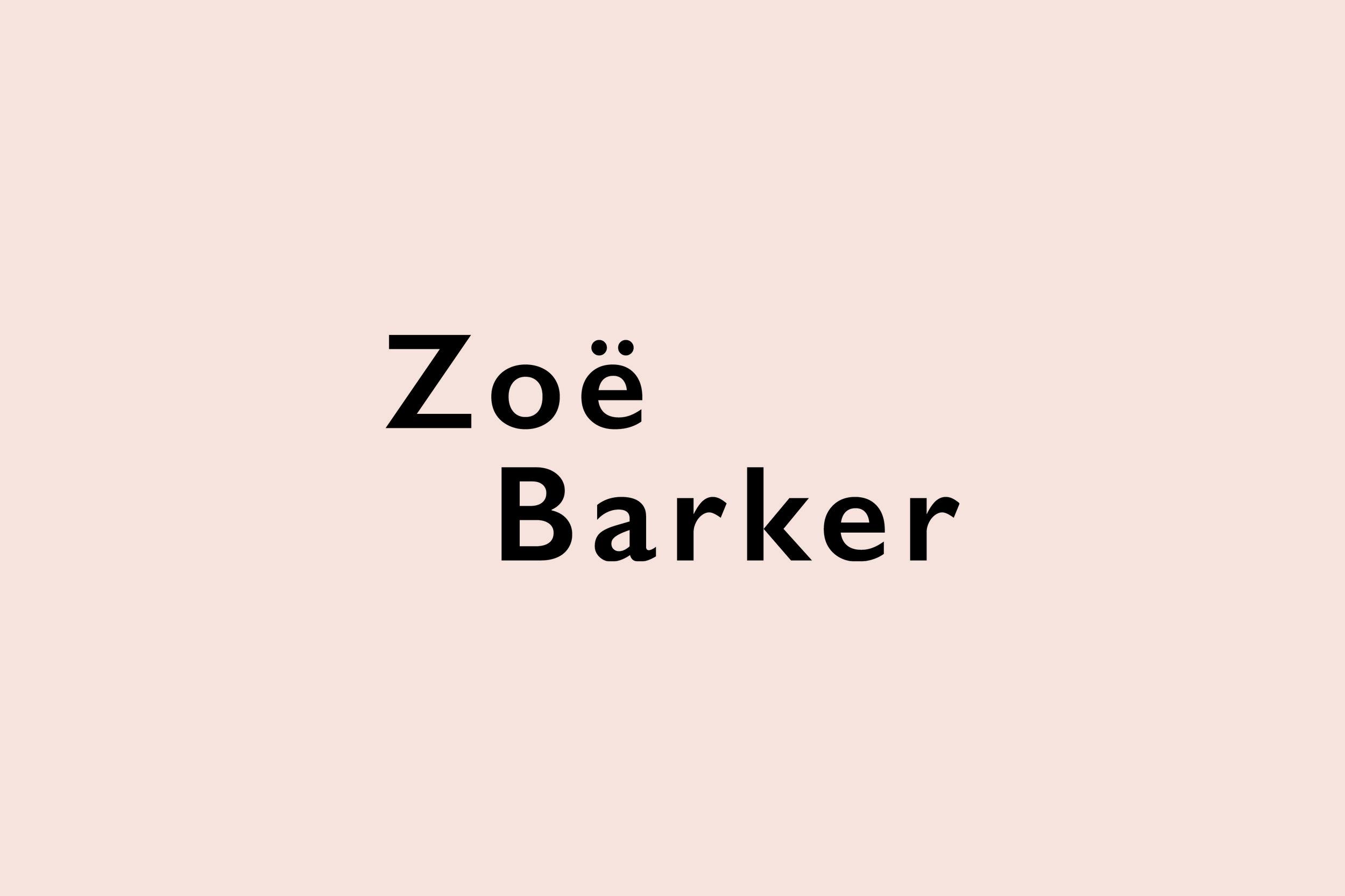 ZBD Logo Website Images2.jpg