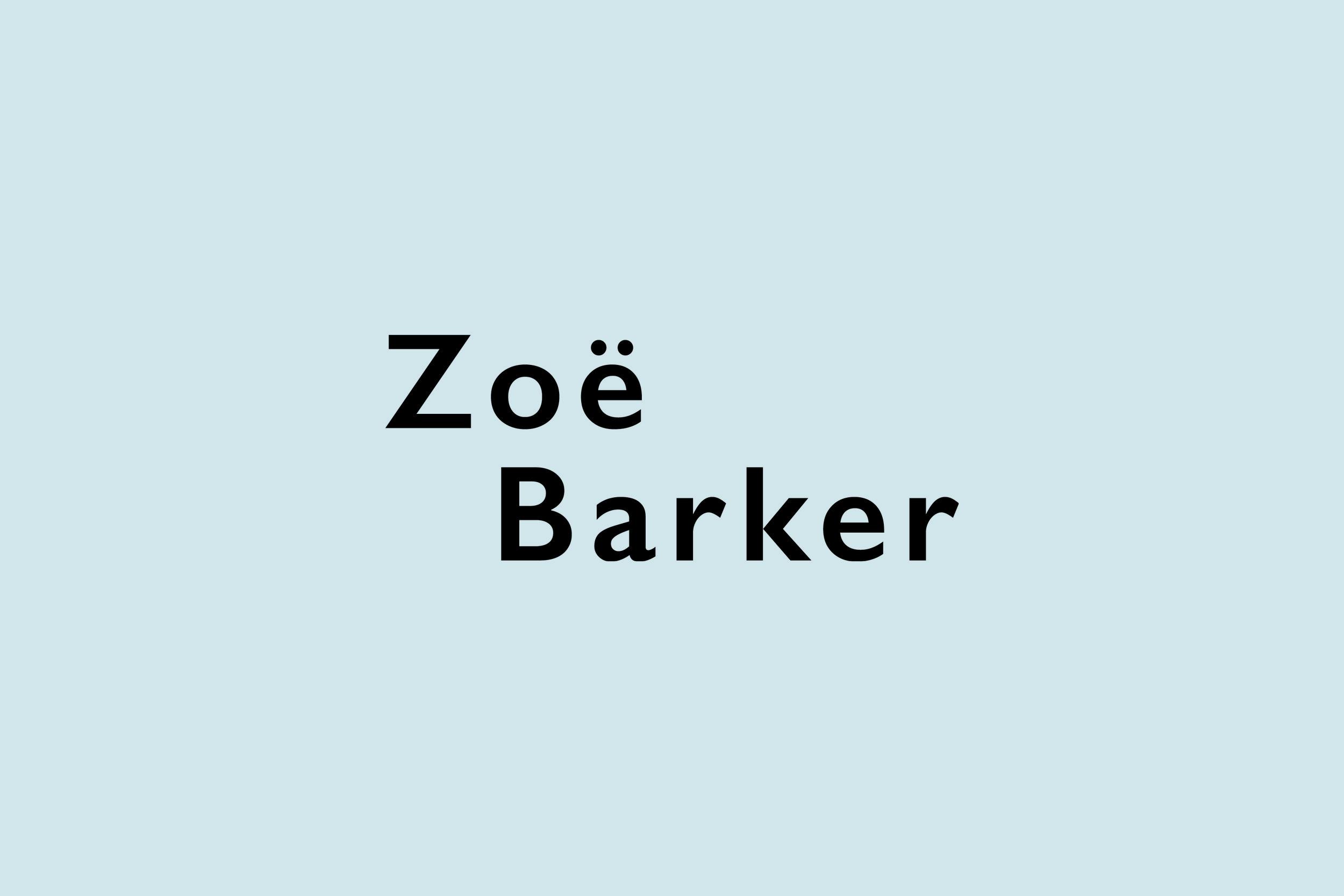 ZBD Logo Website Images3.jpg