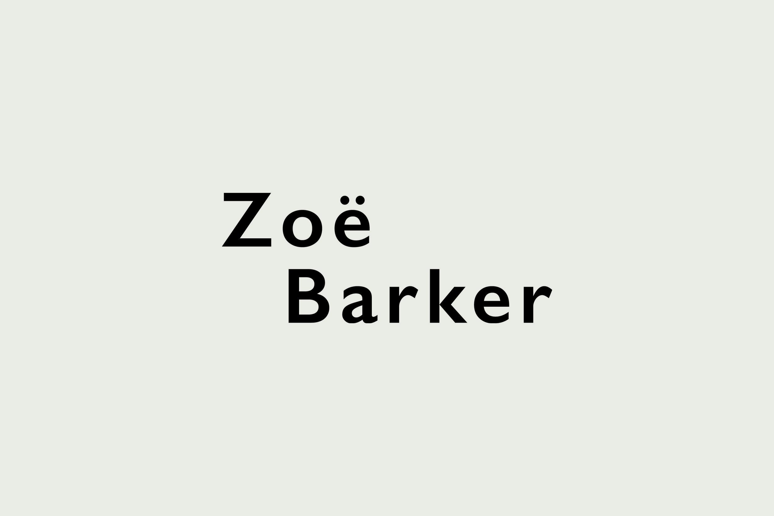 ZBD Logo Website Images4.jpg