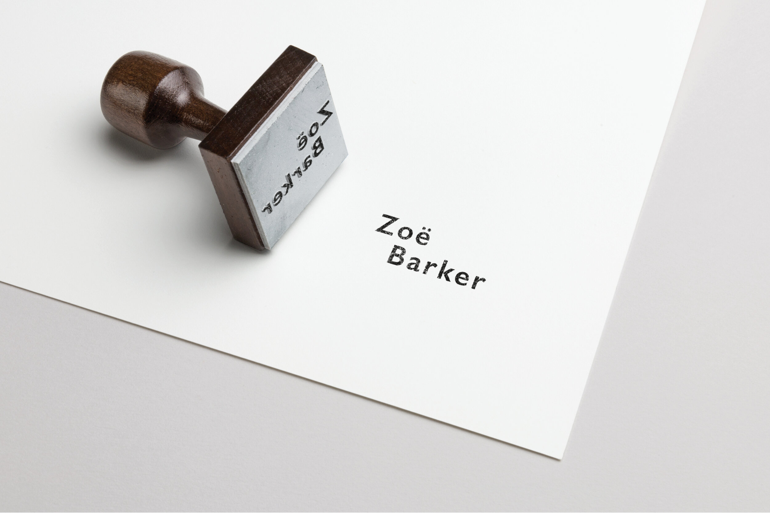 ZBD Logo Website Images5.jpg