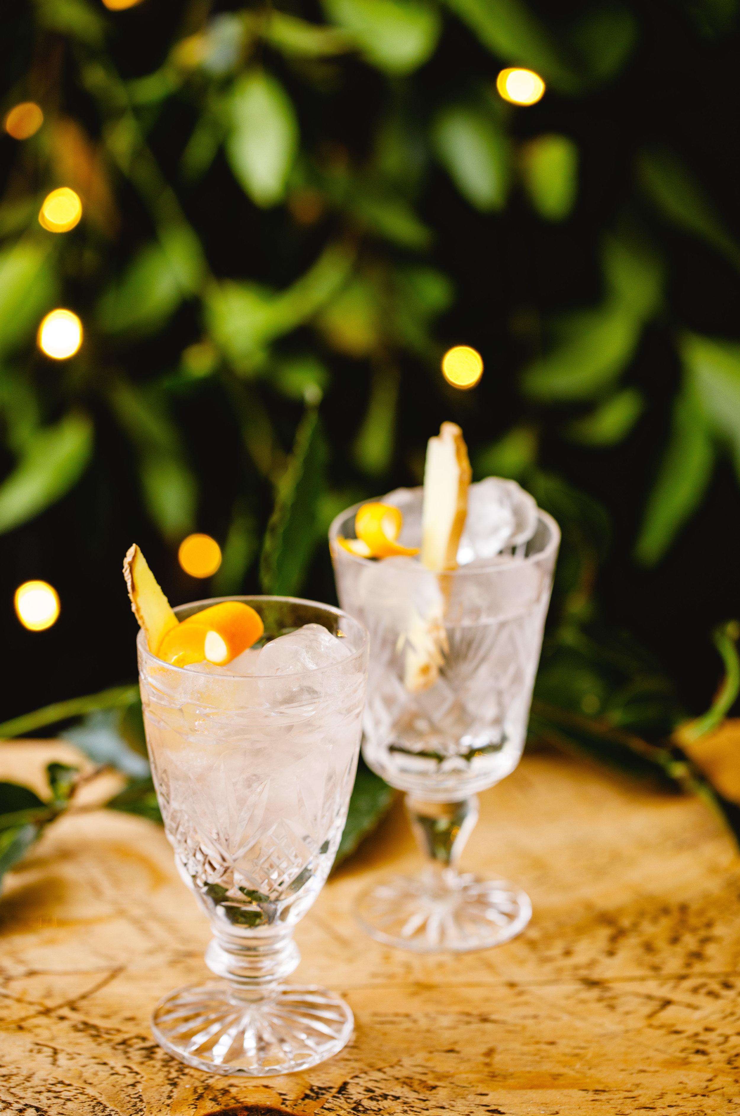 Festive G&T - Difficulty: Super Easy!