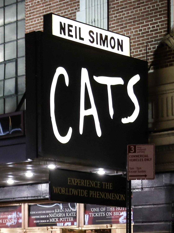 Vean un show de Broadway -
