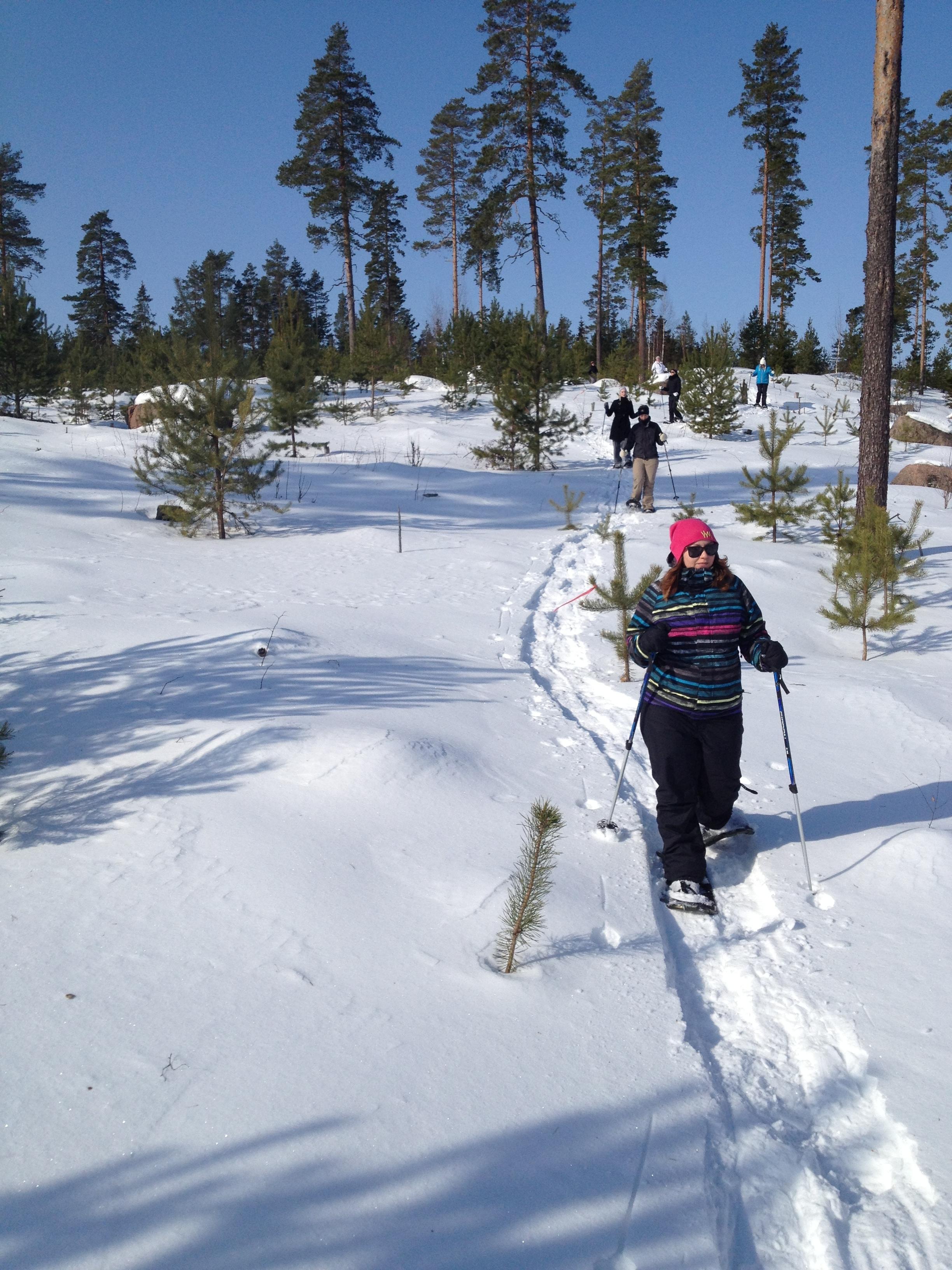 Lumikenkäkävely.jpg
