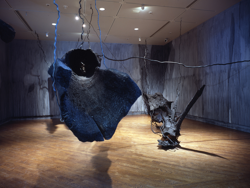 Notes on Light and Shadow, 1999