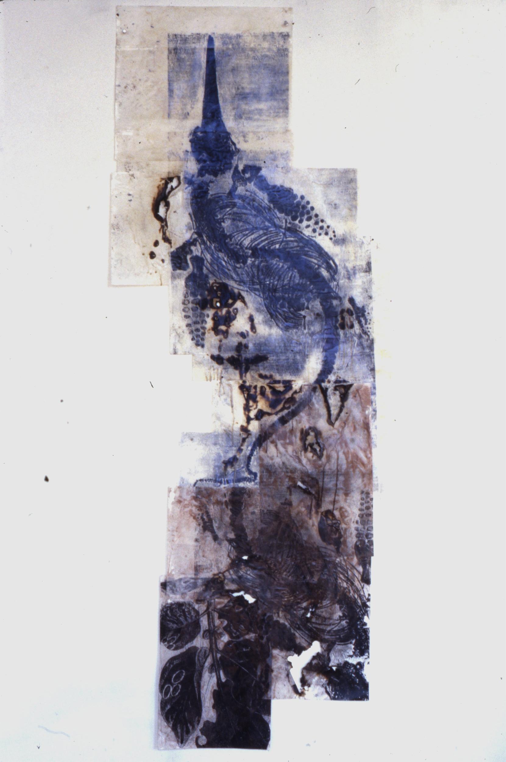 Batracho, 1993