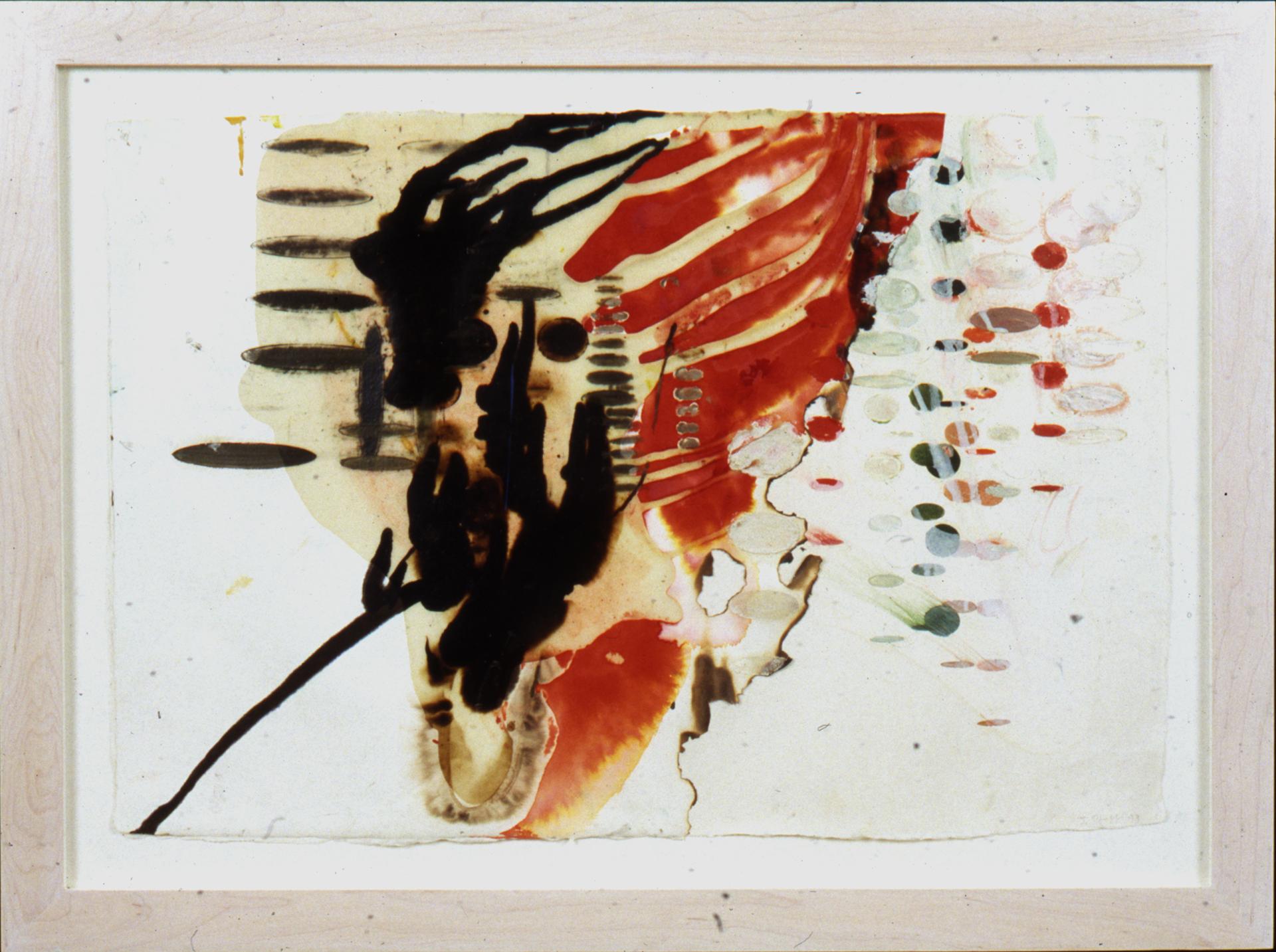 Oogonium, 1993