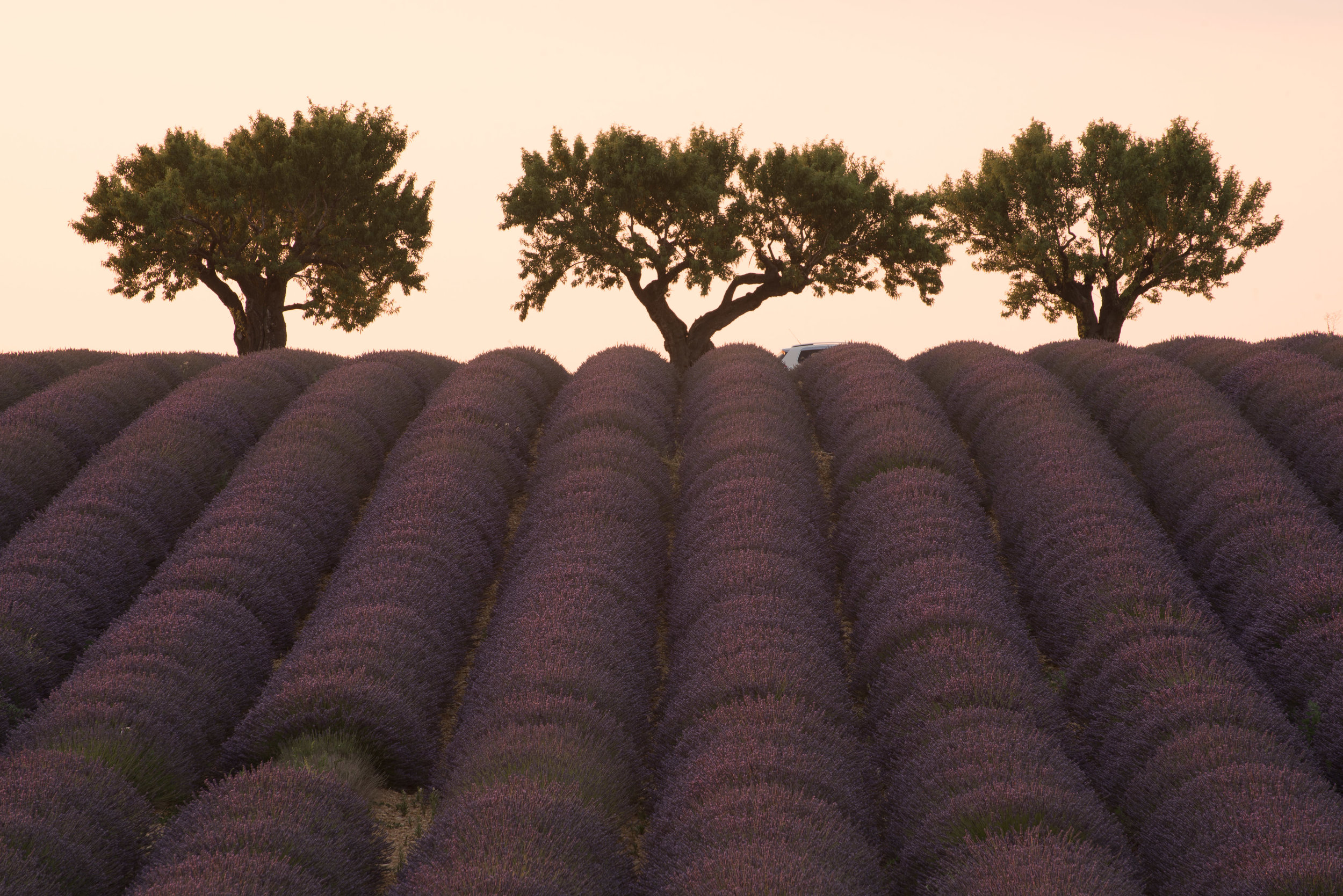 Provence 003.jpg