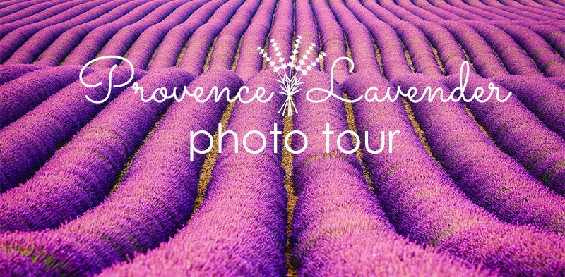 Provence photo tour.jpg