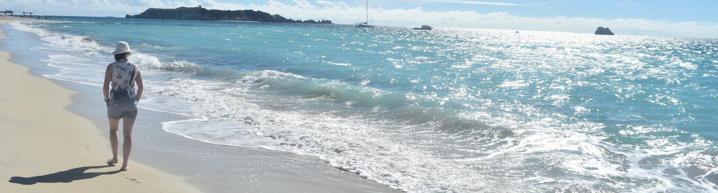 Hamelin Bay, 2019