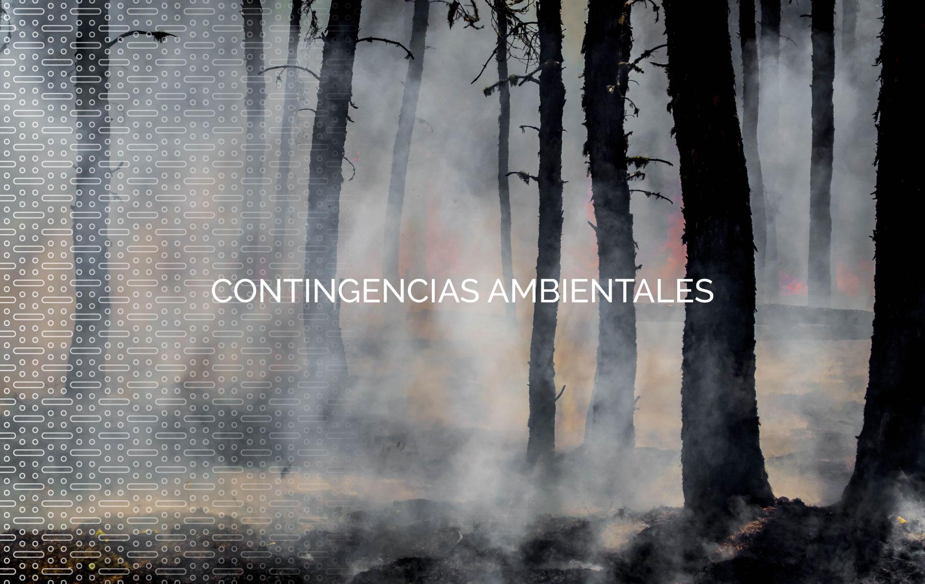CONTINGENCIAS AMBIENTALES