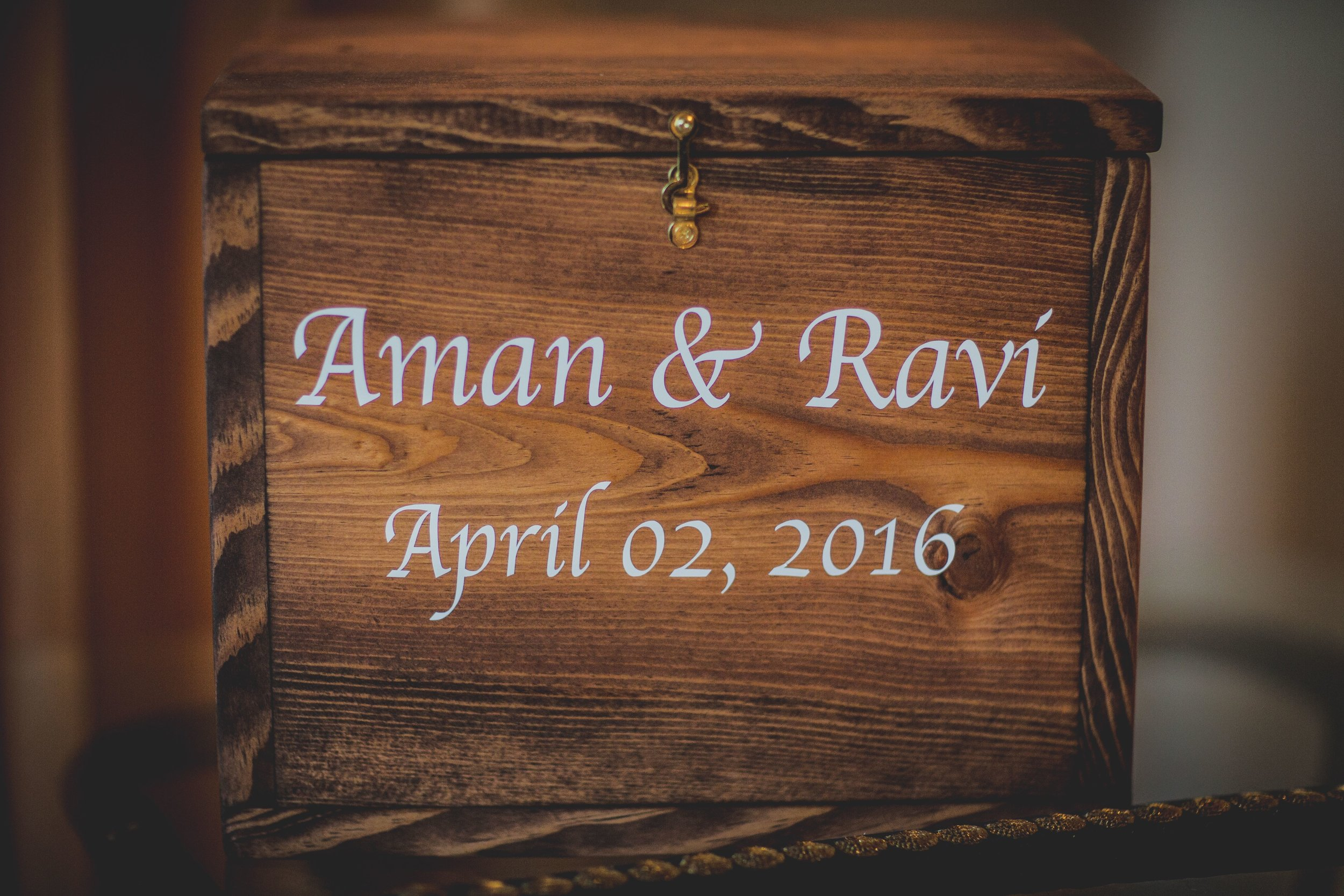 onlineAman & Ravi Wedding & Reception-44.jpg