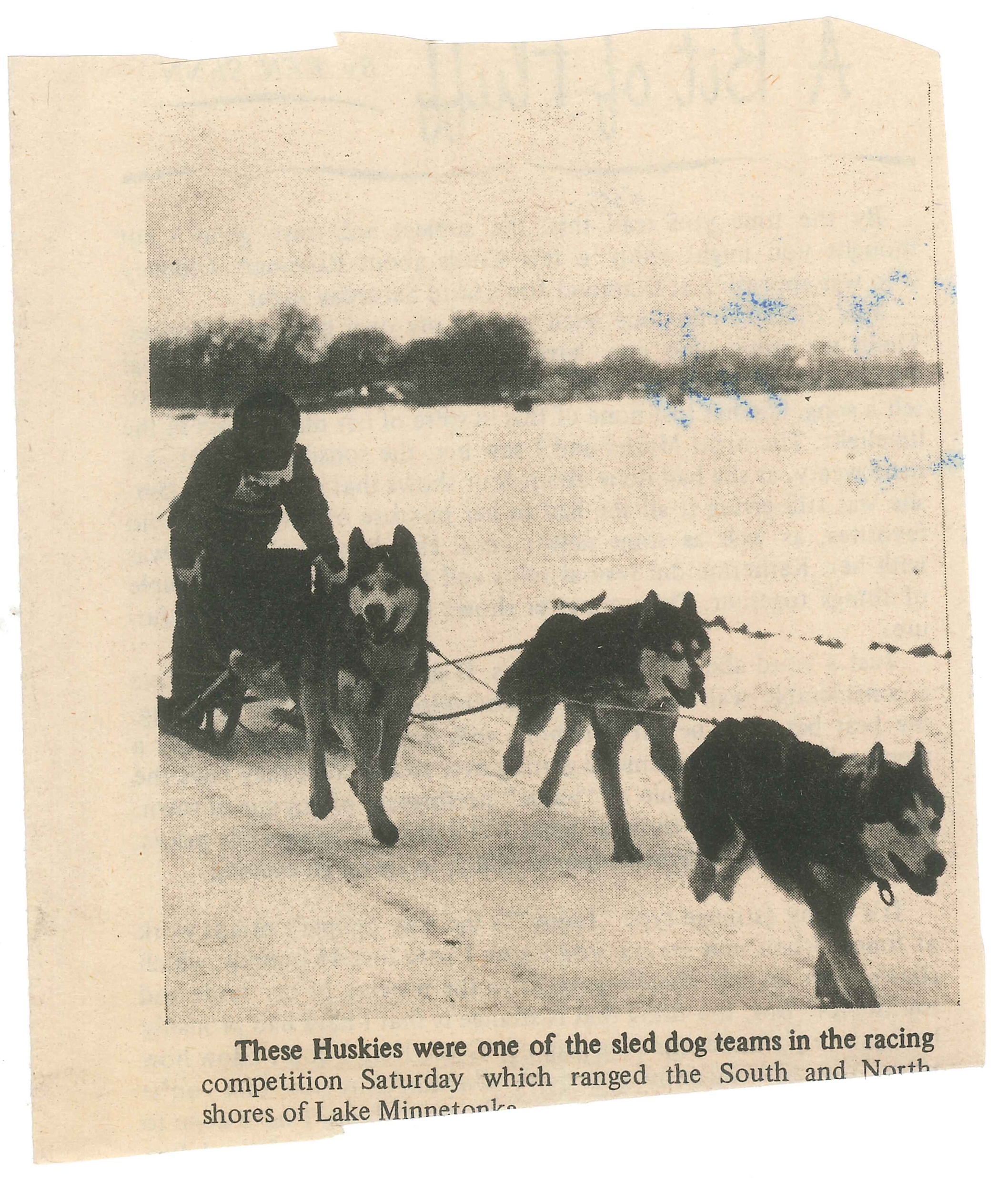 Doggies Racing_.jpg
