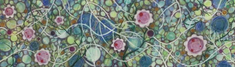 """BIOME BLOSSOMS   Powdered Pastel on Paper.  24"""" x 12"""" FRAMED   $1200     Back to Gallery"""
