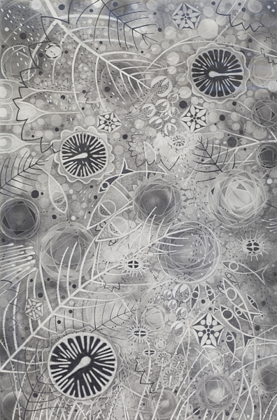 """COSMO II   Graphite Pencil and Powder, Chinese White on Paper.  24""""x36"""" FRAMED   $1700     Back to Gallery"""