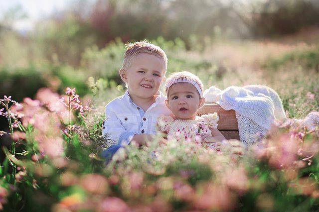 All these weeds in bloom are making locations I would prob not shoot in otherwise look so amazing.  #laceyborbaphotography #magicallychaotic #grandjunctionfamilyphotographer #grandjunctionphotographer