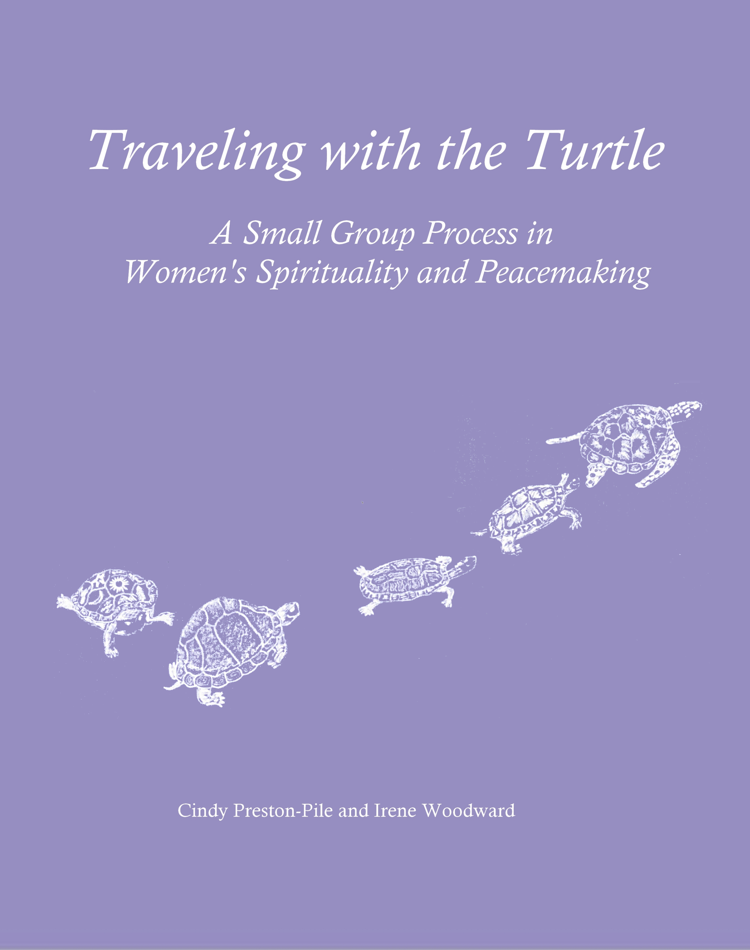 Traveling with the Turtle Front Cover.png
