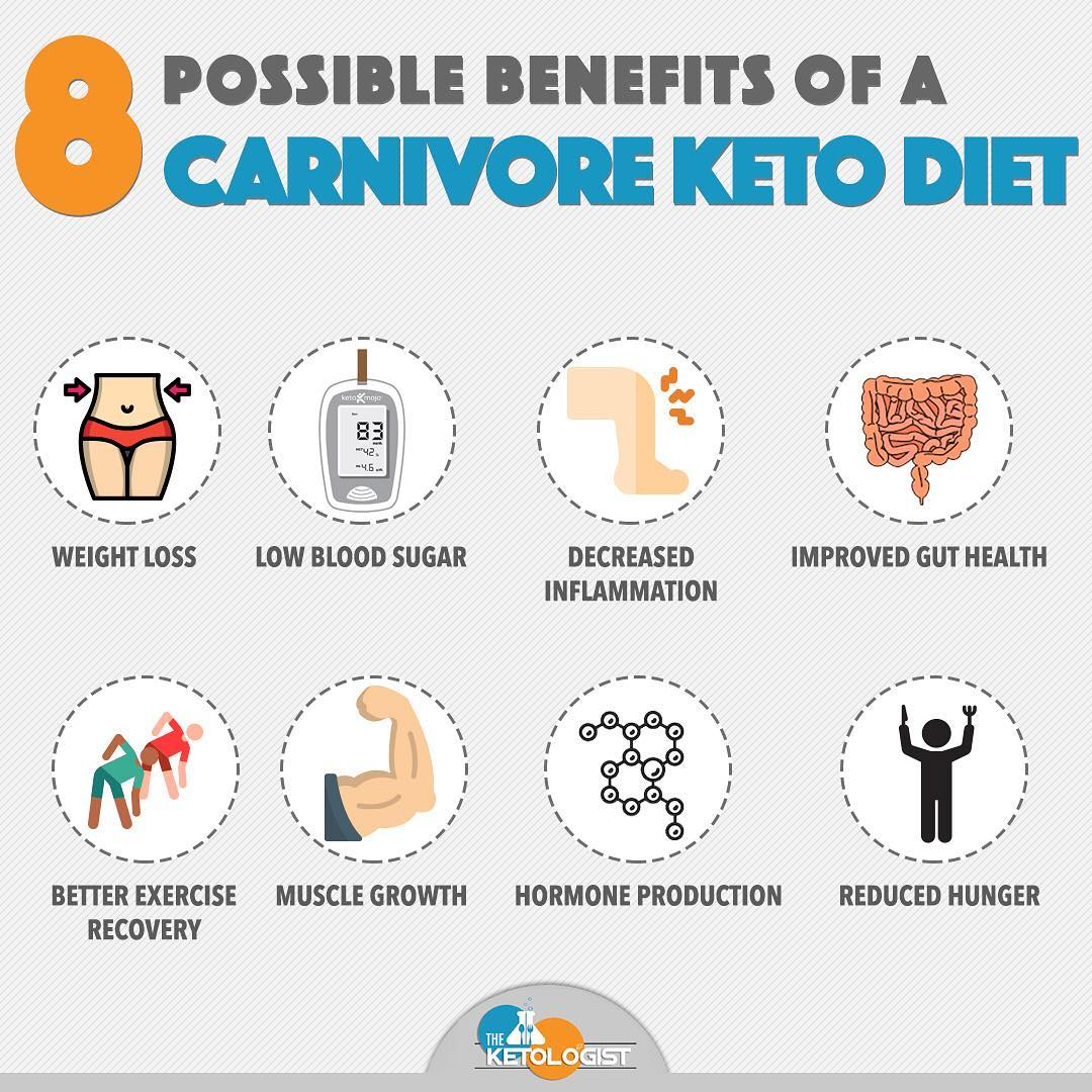8 best times to do carnivore.jpg