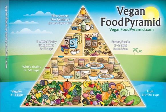 Vegan Food Pyramid vegan-food-pyramid-31.jpg