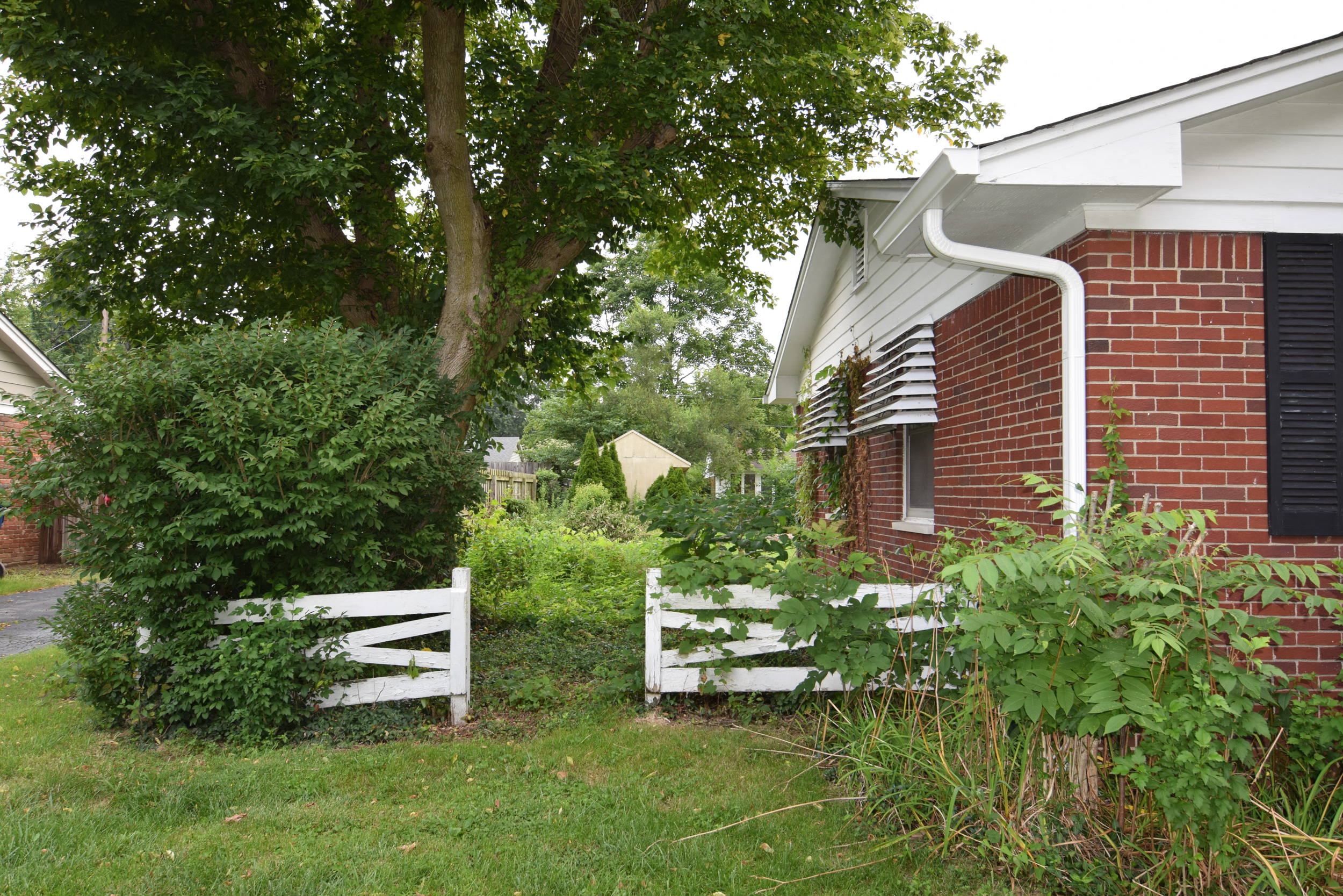 Monarch Homes | The House Next Door | Landscaping - Before