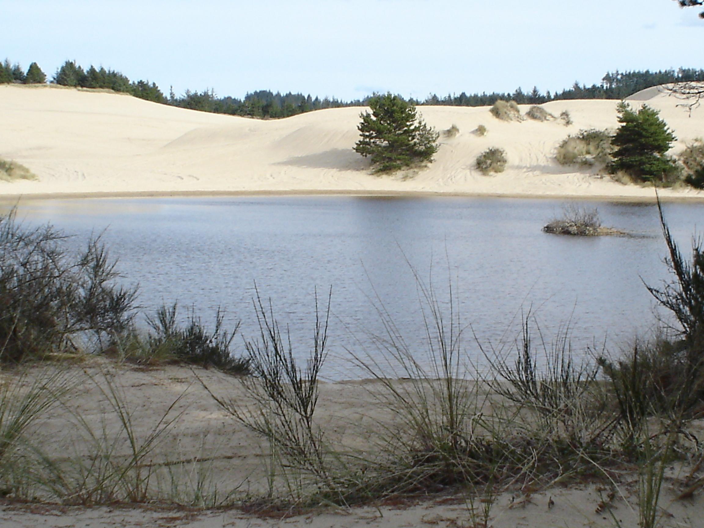 rain lake on dunes.JPG