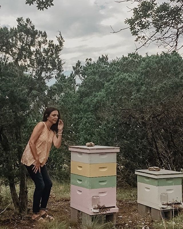 On occasion, I've been known to talk to my hives, as if they really cared what was happening in my human world. Yes, I know, it's odd but true. If something is laying heavy on my mind, whether good or bad, I tell it to my bees.  And apparently, I'm not the only beekeeper over the course of history to do this. This uncanny relationship between humans and bees has led to all types of folk-lore throughout the centuries-one of those being the 'Telling of the Bees'. 🐝🐝🐝🐝🐝🐝🐝🐝To read more about this ancient custom, click on the link in the bio! #tellingthebees #folklore #bees #beekeeping #hives #beekeepingcustoms #beekeeper #madronehillcottage #sustainability #beelore #beehive #thetellingofthebees #sustainableliving #offgridliving #cottagelife #offgrid #alternativeliving #solarcottage #offgridcottage #bees🐝 #honeybee