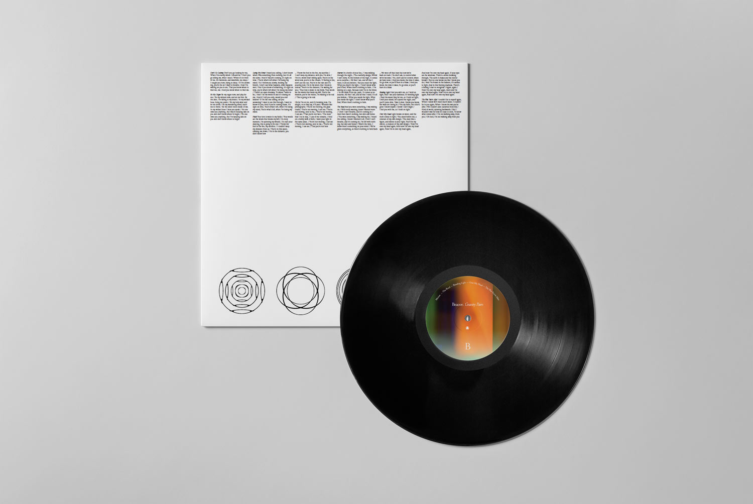06_Vinyl-Mock-up_box-&-vinyl_top-view-2.jpg