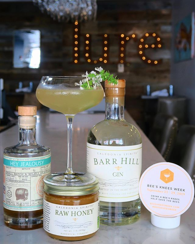 "It's Bee's Knees Week! + Off-Menu Wednesday, 9/25 the ""Bee List""  We are excited to be participating in #beeskneesweek and supporting this great initiative by @barrhillgin to help save the bees $1 of every one of Lure's version of the bee's knees cocktail sold will be donated to the @thebeecause project! + a portion of every check on Wednesday from our ""Bee List"" off-menu menu will also be donated.  Jive Talkin' Cocktail Barr Hill Gin / @saphousemeadery Hey Jealousy Mead / lemon / honey / lavender / basil flowers from our @moffattladd garden  #portsmouthnh #seacoastnh #nhrestaurants #supportlocal #eatlocal #savethebees #lureportsmouth #bigwindows"