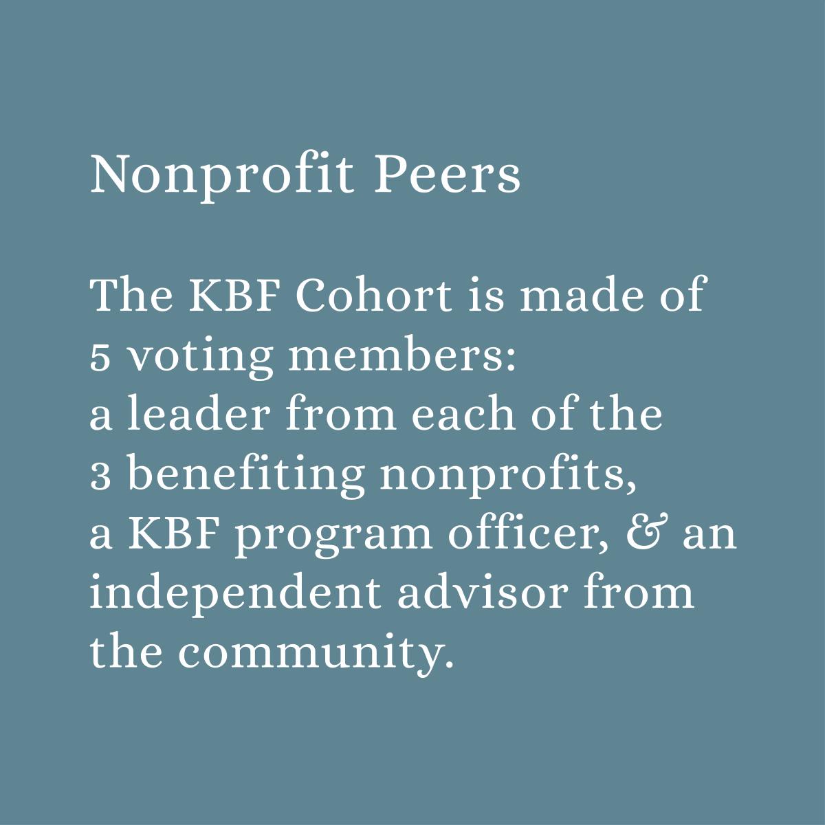 Cohort Details Gallery Tiles_Nonprofit Peers2.png