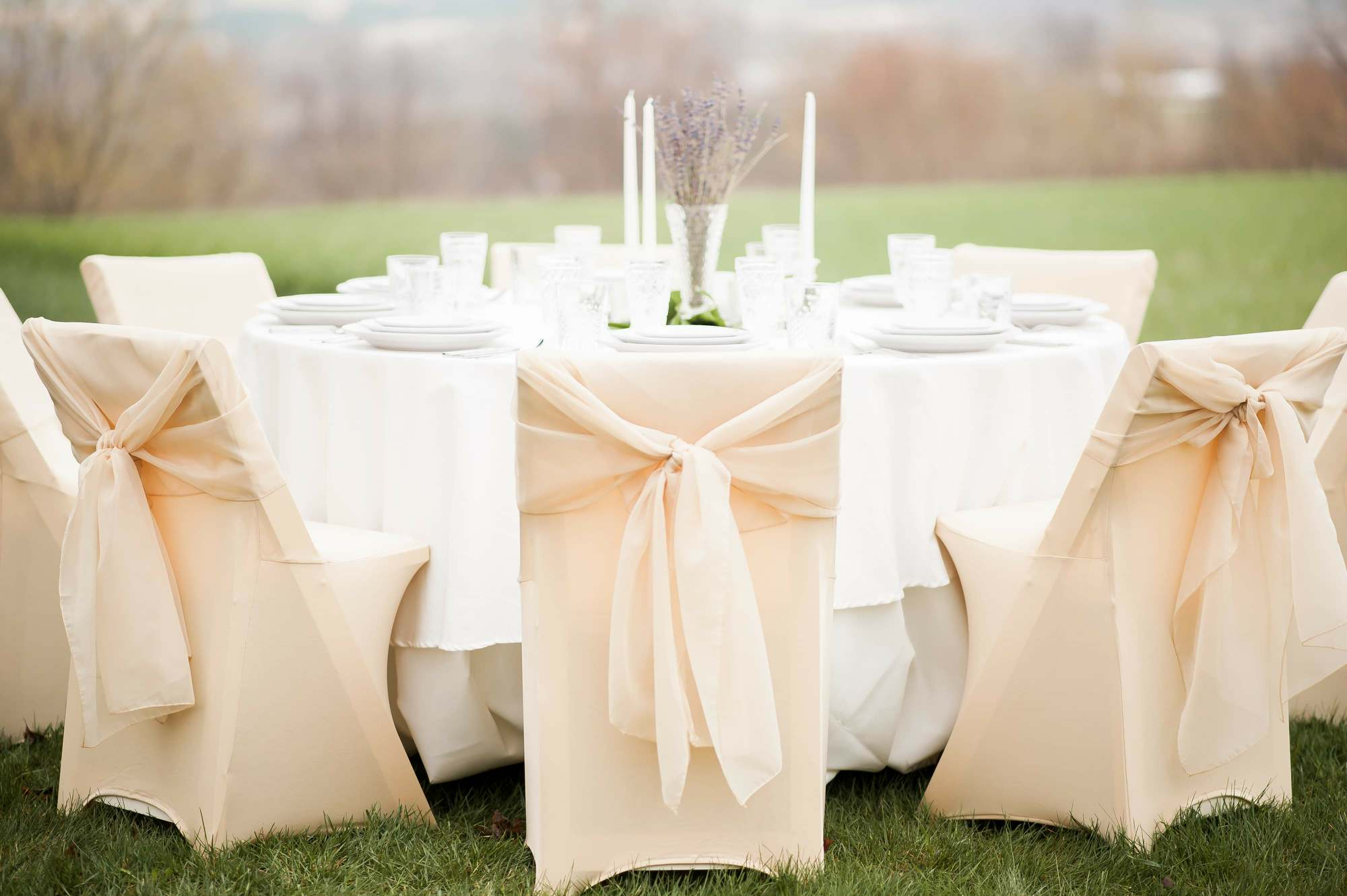 Chair covers outside.jpg