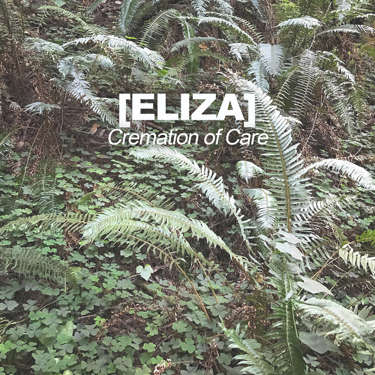 [Eliza] - Cremation of Care