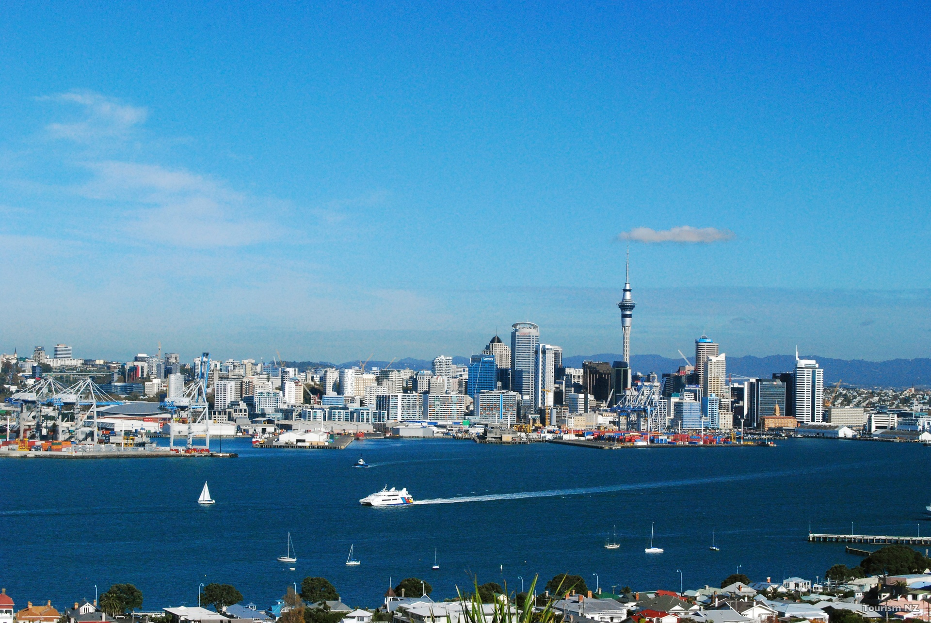 U087-Devonport-Auckland-Tourism-New-Zealand WEB.jpg